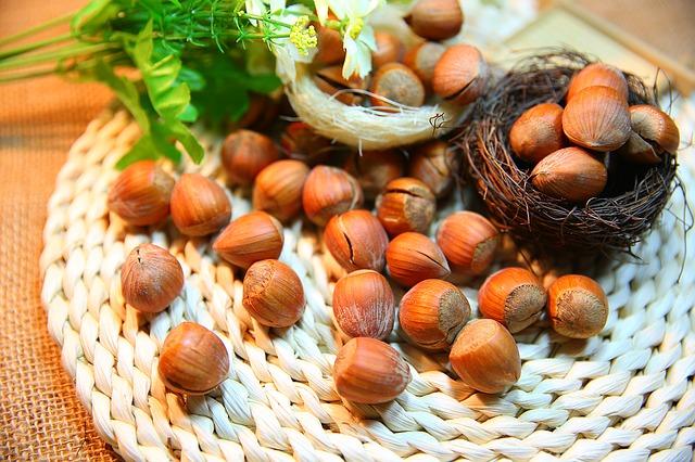 aceite-vegetal-de-avellanas
